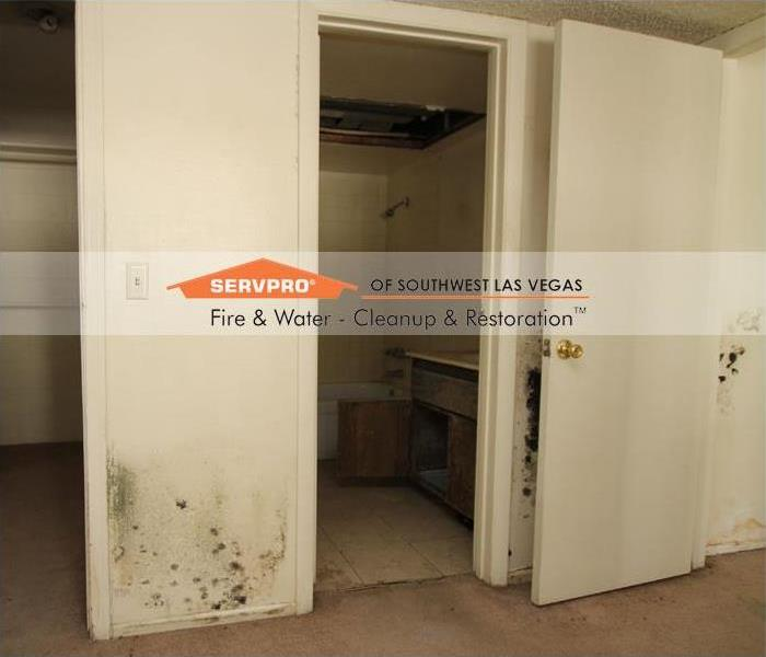 Mold Remediation, Condo Las Vegas Before
