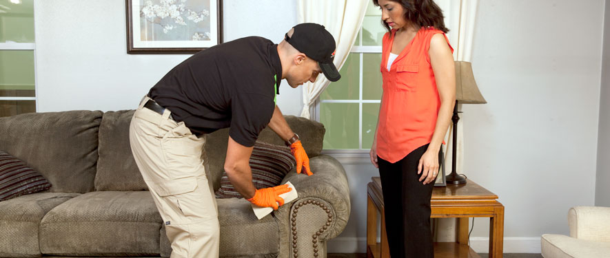 Las Vegas, NV carpet upholstery cleaning